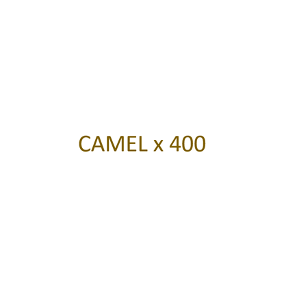 Picture of CAMEL - Filtre x 400