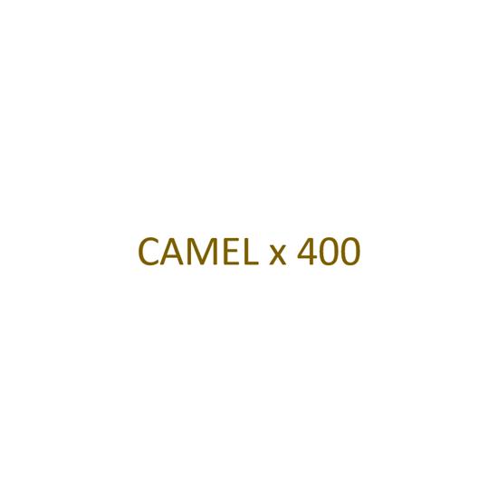 Image sur CAMEL - Filtre x 400